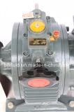 L&B en acier inoxydable et d'utilisation de la pompe à lobes rotatifs de la pompe rotative pour coller