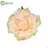 単一の茎のローズの人工花