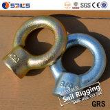 Type de JIS 1169 Écrou de bague en acier au carbone galvanisé