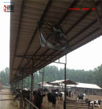 2000년 Cfm 젖소 집 환기 팬
