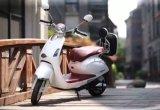 판매를 위한 여자를 위한 경량 전기 발동기 달린 자전거