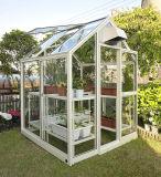 Faible coût pour la vente de serre de jardin