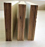 Contre-plaqué, peuplier, bois dur Combi, bouleau, eucalyptus, contre-plaqué commercial