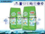Niet Fosforachtig Vriendschappelijk Detergent Poeder Eco
