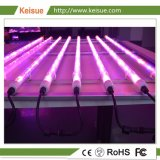 LED Lighting Fixture with 8 GCV Full Spetrum Grow Lamps