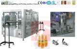 La línea de producción de zumo, jugo de la botella pequeña máquina de envasado