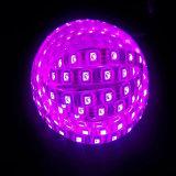 세륨 승인되는 높은 밝은 5050 단 하나 Color/RGB LED 지구 빛