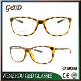 Het populaire Optische Frame van het Oogglas Ultem Plastic Eyewear met Tempel 8013 van de Vezel van de Koolstof
