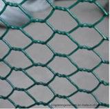 Cage de volaille utilisés filet métallique à tête hexagonale