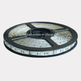 12V SMD 5050 tira flexible de LED blanco frío