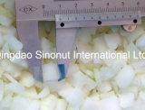 20*20mm 동결된 양파 조각 영국 질 수준