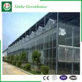 Invernadero de aluminio de la hoja de la PC del perfil de la agricultura para la fruta