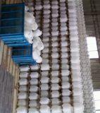 Hete Pressure Sprayer XFB (III) - 4L