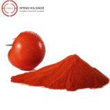 Polvo sano del tomate del alimento