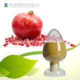 Ellagic кислоты / гранатовый экстракт растений (CAS: 476-66-4)