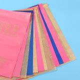 Las bolsas de plástico Ziplock impresas aduana calificadas alta calidad del resbalador (FLZ-9217)