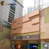 Древесина композитный пластмассовые наружная стена (TH-10)