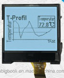 FSTN 128128 grafisches Mono-LCD Panel-Positiv