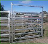 Скотины ограждая сваренную трубой загородку лошади