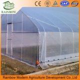 10 Anos de Garantia Hot Galvanized Pipe China Cheap Film Agriculture Single Span Tunnel de Estufa