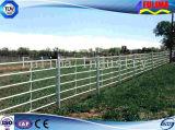 Оцинкованный крупного рогатого скота Corral панель для Австралии рынка