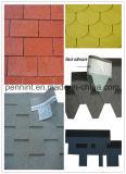Multi Farben-Bitumen-Dach deckt Asphalt-Schindeln ab