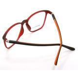 최신 새로운 대중적인 디자인 Tr90 유리 안경알 Eyewear 광학 프레임