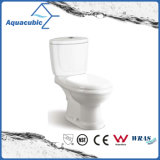 Washdown Tweedelig Dubbel Toilet in Wit (ACT6833)