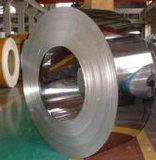 Prime de bandes en acier inoxydable de haute qualité et les bobines fournisseur