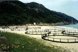 Cage de poissons de HDPE d'aquiculture, cage nette de pisciculture