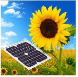 El mono panel solar del precio bajo 10W 12V para el uso casero