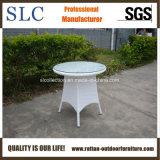 Des meubles en rotin et de meubles en plastique Set/des meubles en bambou (SC-M0035)