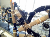 26inch MTB 자전거, CTB 자전거, Shimano Derailleur, 16speed.