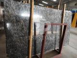 سديم نوع ذهب رخام لوح لأنّ أرضية/أرضية/درجة/جدار/غرفة حمّام/مطبخ قرميد/غرفة حمّام/جدار قرميد