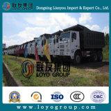 아프리카를 위한 HOWO 광업 덤프 트럭