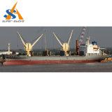 17.000 dwt buque granelero