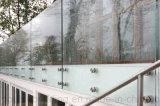 Het Traliewerk van het Balkon van de Balustrade van het Glas van Frameless van de Klem van het Glas van het roestvrij staal