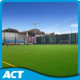 総合的な草、フットボールの人工的な草、サッカーの草(W50)