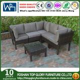 Viro PET Rattan-Sofa-Tisch-gesetzte im Freienmöbel