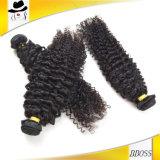 利益9AにRemyのブラジルの加工されていない毛をすることができる