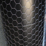 Rete metallica del pollo/rete metallica esagonale rivestita del PVC & galvanizzata