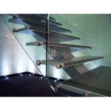 Escalera recta del paso de progresión de cristal del pasamano de Galss