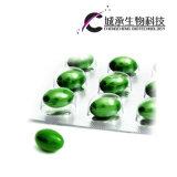 Hoodia Kaktus-Abnehmen-und Unterhalt-dünne Gewicht-Verlust-Kapsel