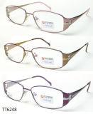 Het hete Verkopende Buitensporige Optische Frame van het Titanium van de Manier (TT 6248)