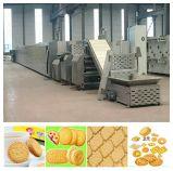 Vario biscotto duro e macchina molle del biscotto (100-150kg/h), macchina di fabbricazione di biscotti sulla vendita calda