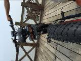 صاحب مصنع [3000و] [48ف] إطار العجلة سمين [إندورو] درّاجة كهربائيّة