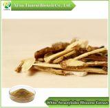 Extrait de rhizome Atractylodes blanc, de la poudre 10 : 1