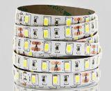 Lámpara del precio de fábrica 2835 LED con precio de fábrica