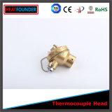 Testa della termocoppia (testa del collegamento)
