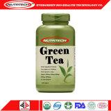 L'extrait de thé vert amincissant le poids détruisent la capsule molle de gel